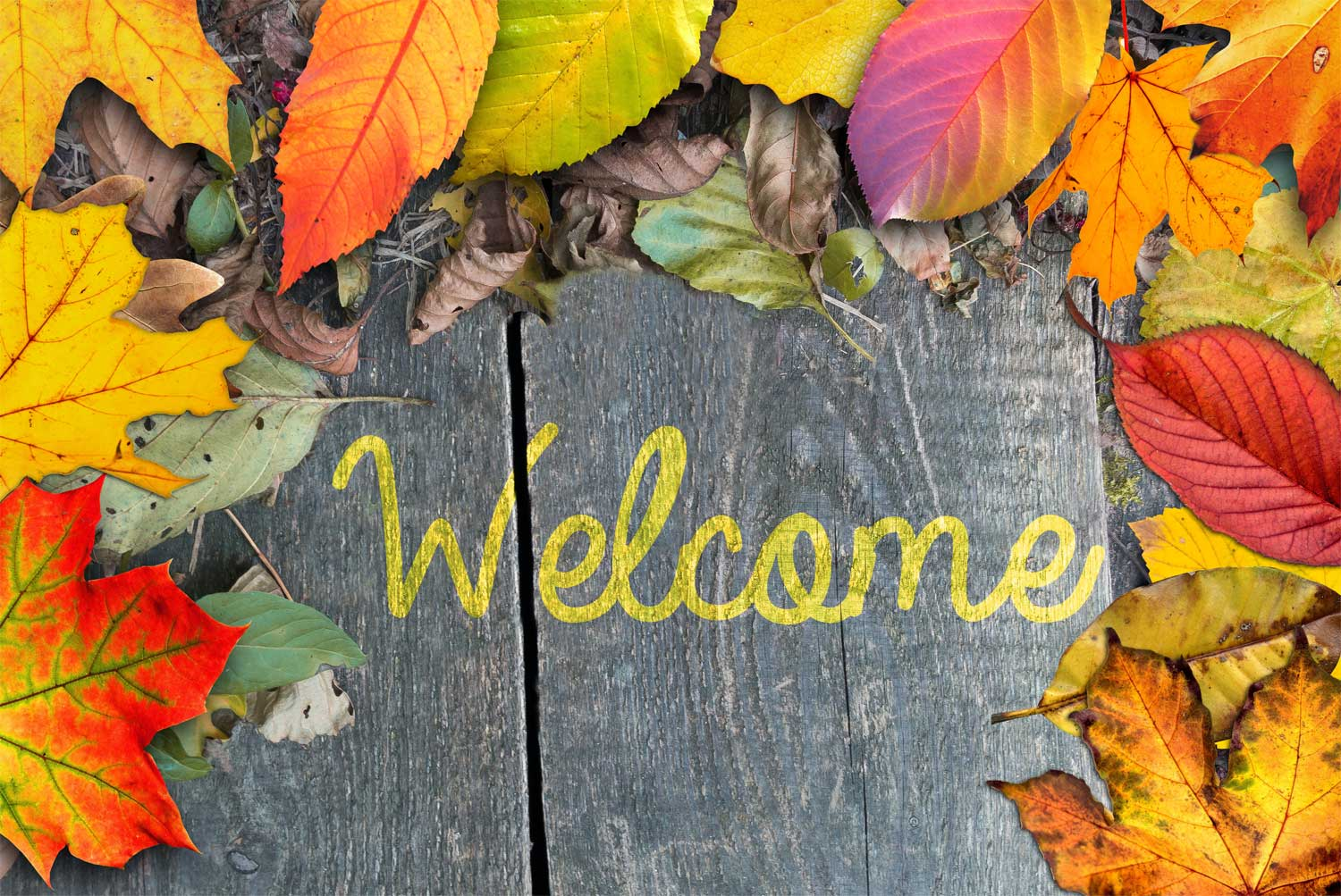 All seasons rustic welcome fall decorative doormat maggies home boutique kristyandbryce Images