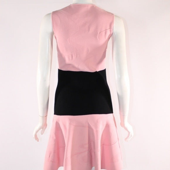 Alexander McQueen Colorblock A Line Dress