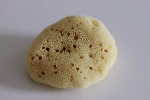 Natural Face Sponge (Medium)
