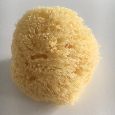 Natural Bath Sponge (Large)