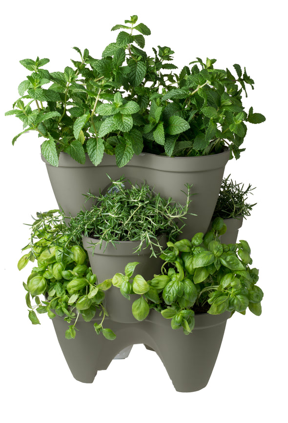Ivy Planter 3 Pack
