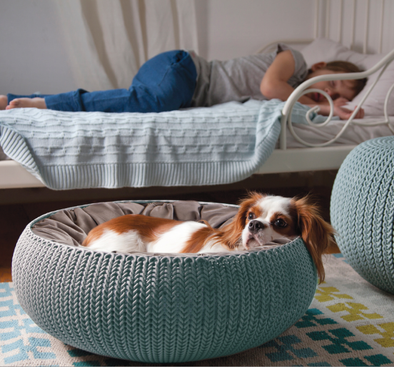 Curver Cozy Pet Bed