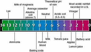 pH and alkalinity