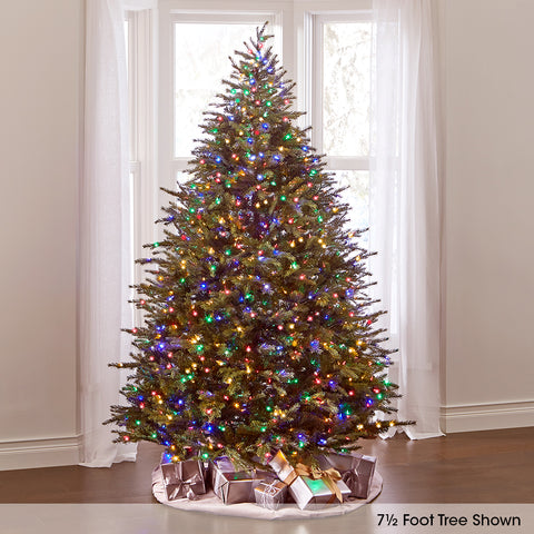 Dual Lit Concolor Fir Tree (Full)