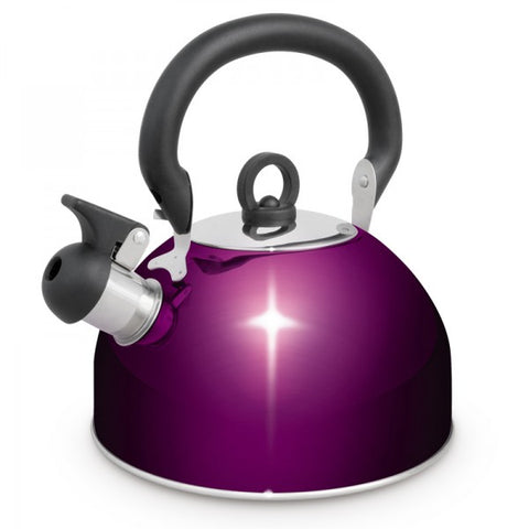 KETTLE S/S 2.5L WHISTLING PURP