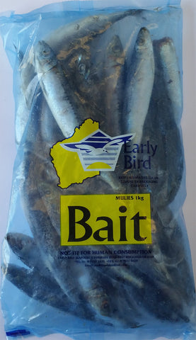 BAIT MULIE SALTED 500GM E/BIRD