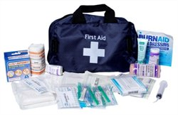 KIT FIRST AID PRO 3 AP300 EQUI