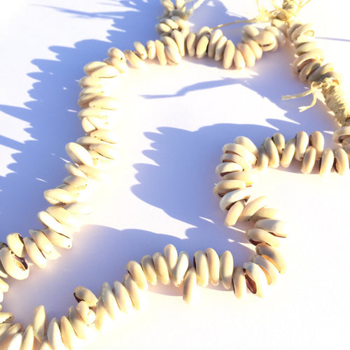 Cowrie Shell Wall Necklace XL