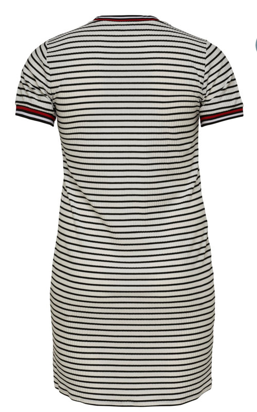 Carlou Stripe Dress