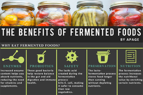 發酵食物好處  Benefit of fermented food