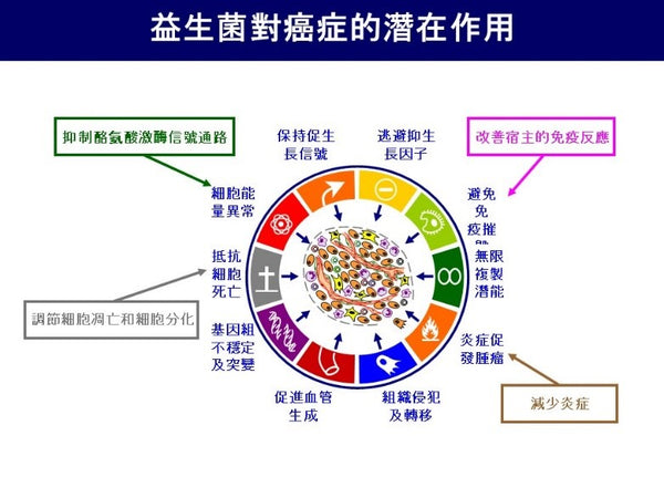 益生菌對癌症的潛在作用 potential effect of probiotics on cancer