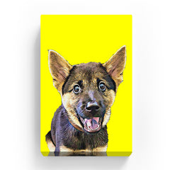 Pet Canvas - Yellow