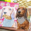Custom Pet Canvas - Pets United Plus
