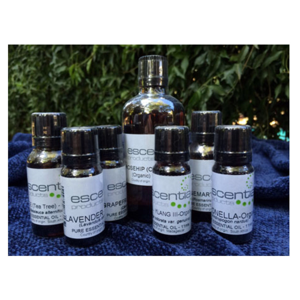 Neem Cold Pressed 100ml [Escentia]