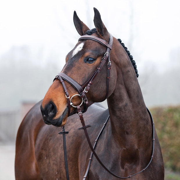 Venice Padded Bridle