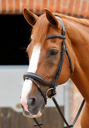 Favoloso Anatomic Bridle by Premier Equine