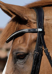 PEI Abriano Anatomic Double Bridle