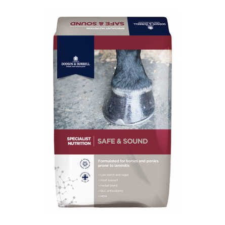 Dodson & Horrell Safe & Sound