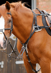 PEI Invorio 5 Point Breastplate