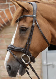PEI Favoloso Anatomic Bridle