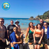Discover Snorkelling Experience (Guided Snorkelling Tour) - Waiheke Dive & Snorkel LTD