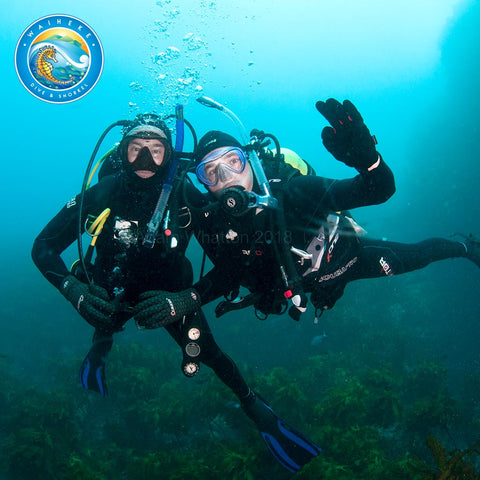 Discover Scuba Diving (Try Dive)