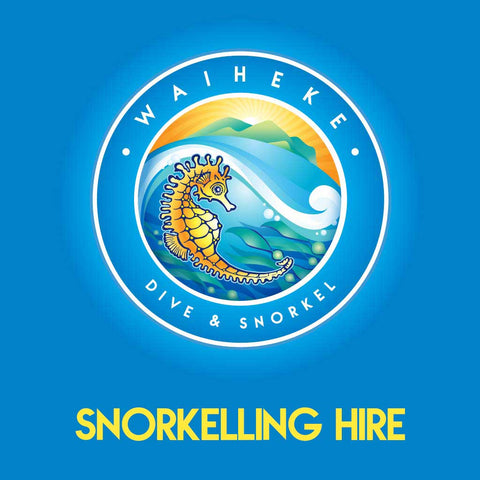 Hire Gear - Snorkelling - Waiheke Dive & Snorkel LTD