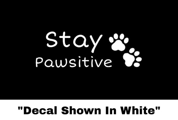 Stay Pawsitive Sticker - Car Decal