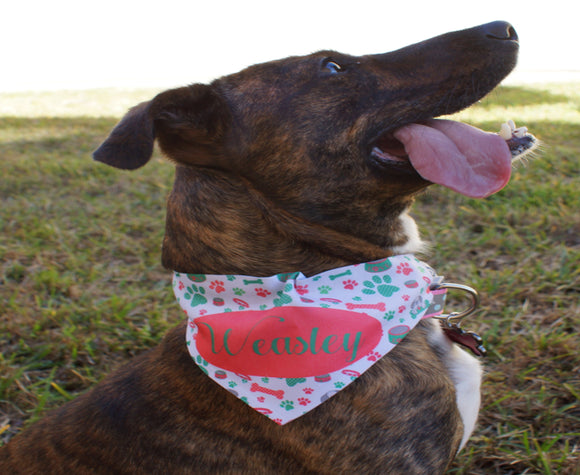 Dog Scarf with Collar | Three Sizes