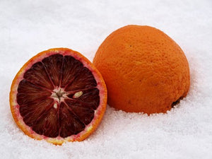 Blood Orange| Premium Natural Essential Oils | Aromatherapy in NZ