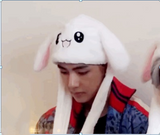 BTS Cute Animal Hat- V