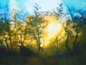 "Sunset through Central Coast Oaks (24"" x 32"")"