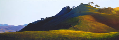 Poly Canyon Pasture (12