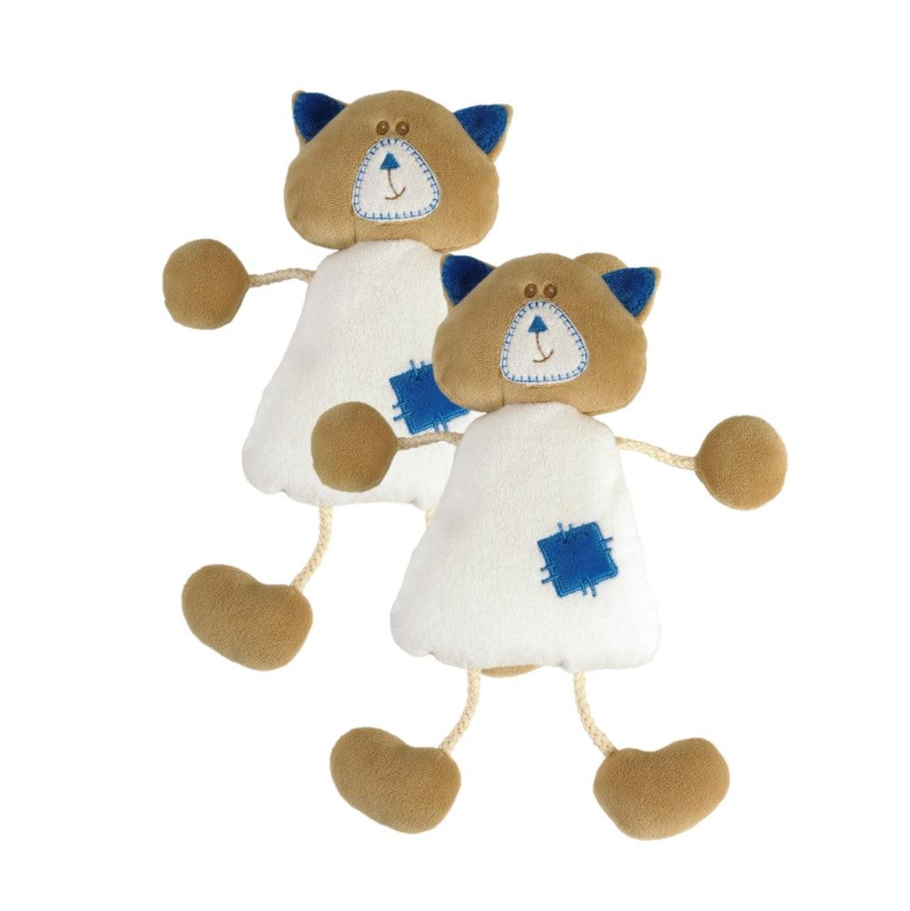 apollon le chaton: duo de scoobidoudou