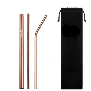 3 Steel Straws Set
