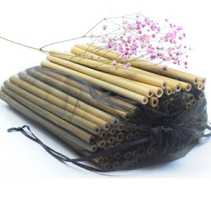 2 Natural Bamboo Straws Set