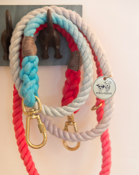 Custom Found My Animal Leash in blue and red
