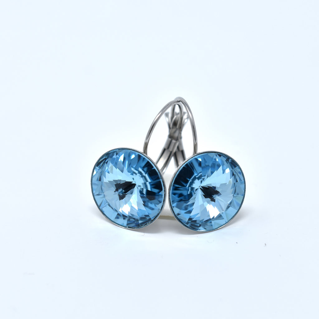Swarovski Rivoli Stainless Steel Earrings