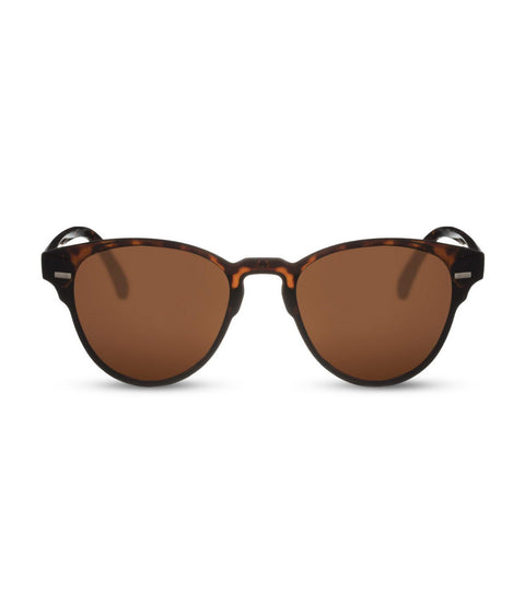 Classic Brown Smoke Lens in Tortoiseshell Sunglasses
