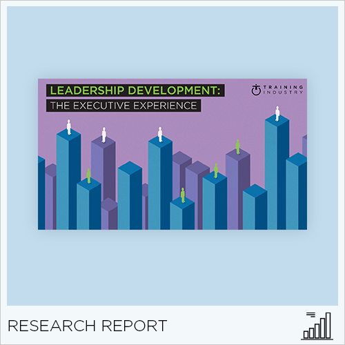 Leadership Development: The Executive Experience