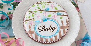 Baby Prettier Plaques Stenciled Cookie