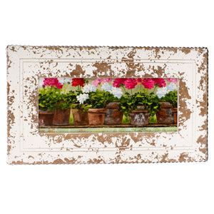 Gallery Framed Geranium Line Up Print