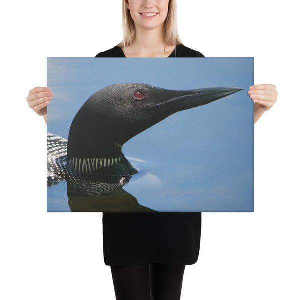 Loon Canvas