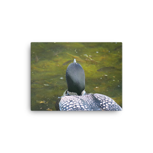 Loon & Fish Canvas