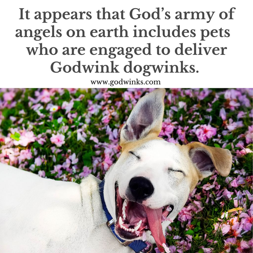 The divine alignment of Godwinks