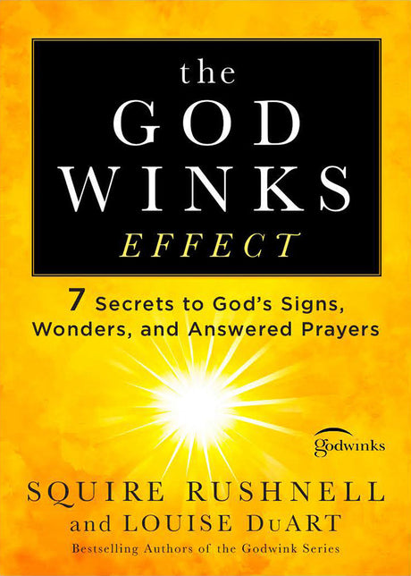 The Godwink Effect (PB)