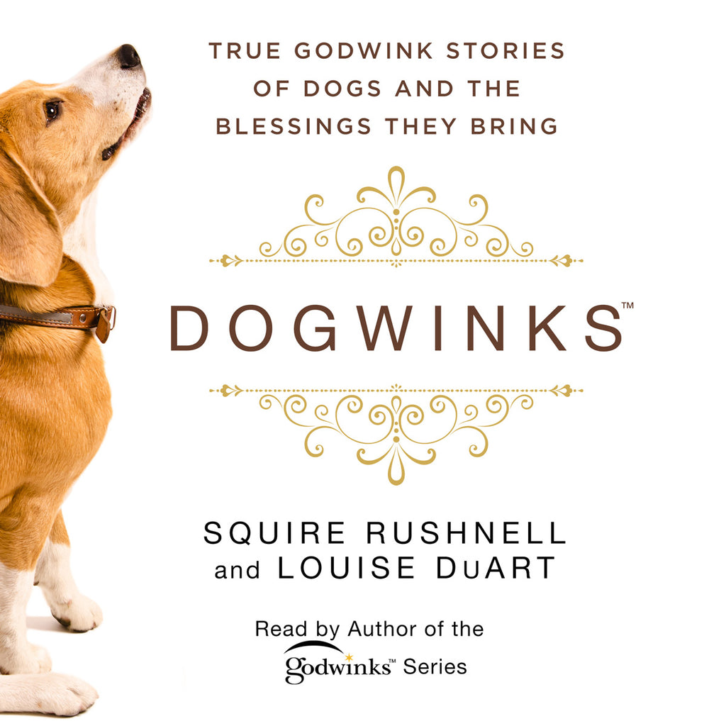 DogWinks: True Godwink Stories of Dogs and the Blessings They Bring