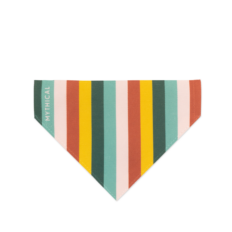Stripe-a-delic Dog Bandana
