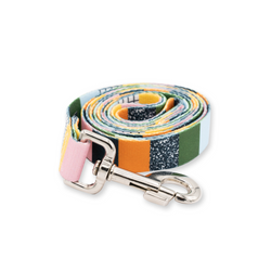 Patchquirk Dog Leash
