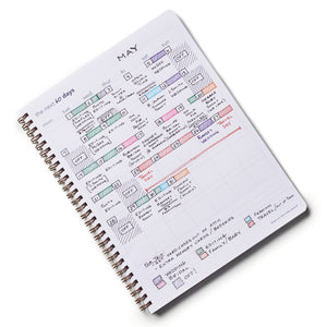 Everyday Visionary Planner by ZerModus - 60 day strategy planning example